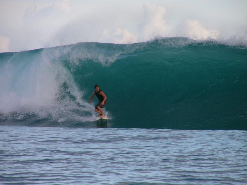 Gaffuri Mentawai Islands